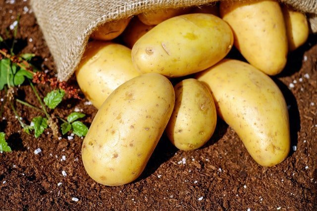 Εγκεκριμένα Μυκητοκτόνα Καλλιέργεια Πατάτας