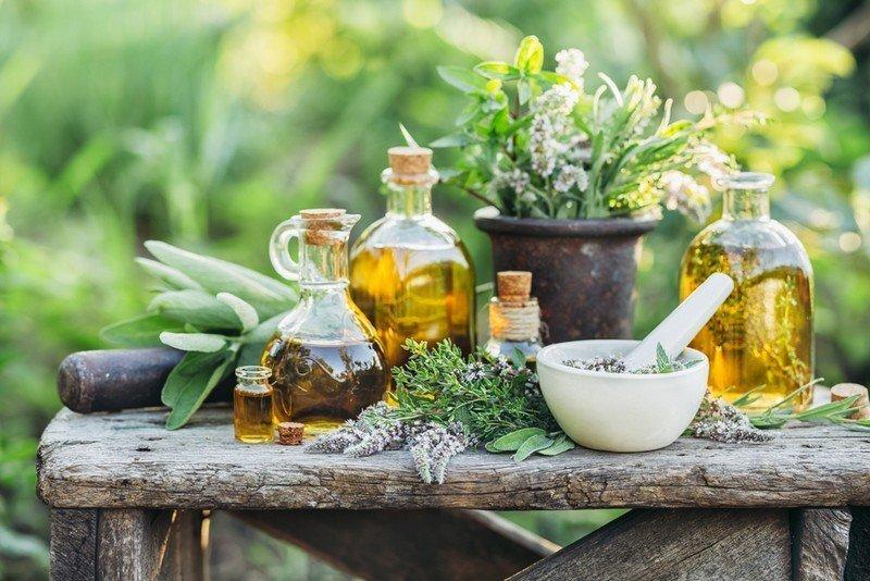 Αρωματικών Φυτών