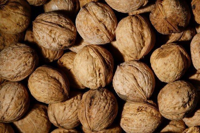 Γεωργική Προειδοποίηση Παραγωγών Καρυδιάς