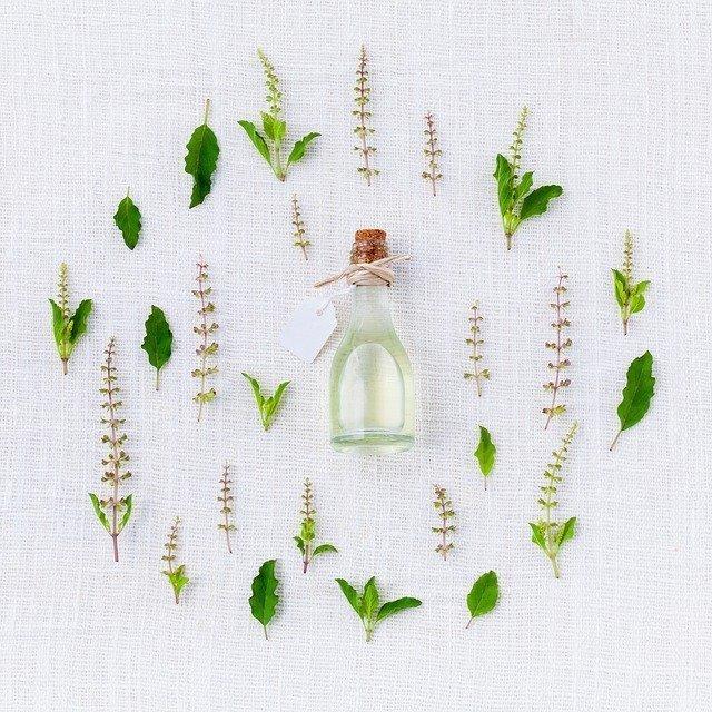Φυτα Αρωματικα