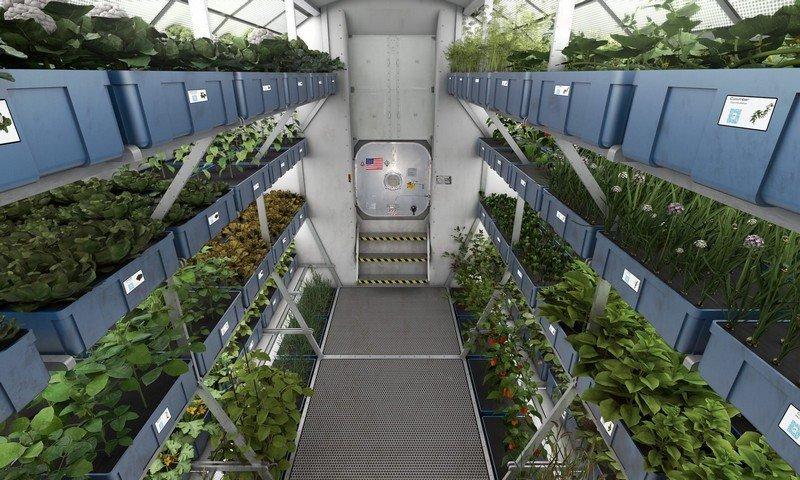 Καλλιέργεια Τροφίμων στο Διάστημα