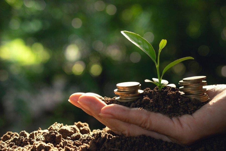 Ενιαία Ενίσχυση για Μικρούς Αγρότες