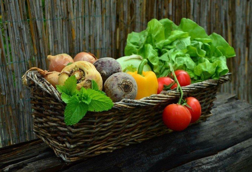 Καλλιεργητικές Εργασίες Ιουλίου