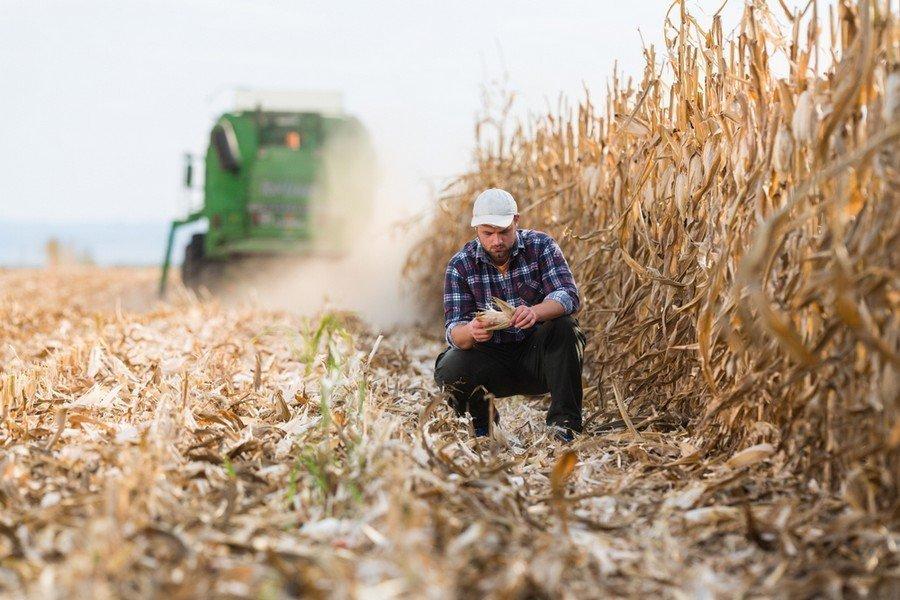 Πραγματικούς Αγρότες