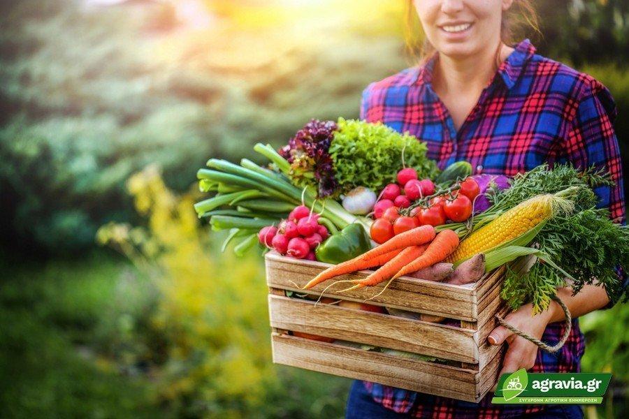 Ωμά Λαχανικά