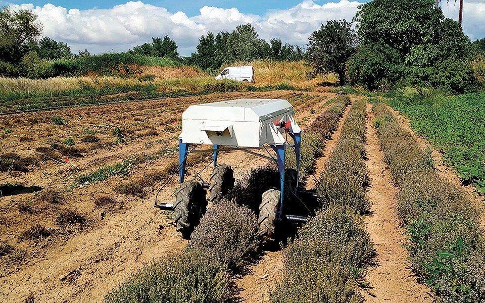 Ρομπότ Αγρότης