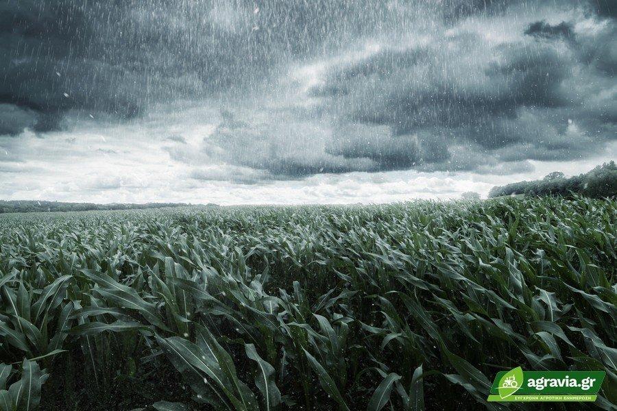 Πτώση Θερμοκρασίας λόγω Βροχών